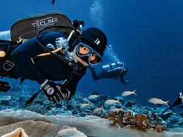 世界上一半的珊瑚礁已死亡 美国国家海洋与大气管理局呼吁用AI来拯救